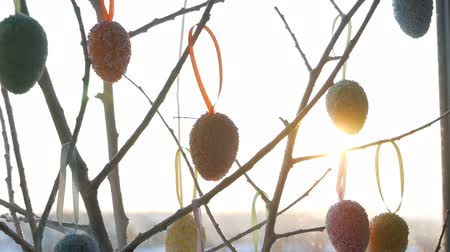 csaj : Spring sunrise breaks through the decorative branches on which the hung colorful Easter eggs