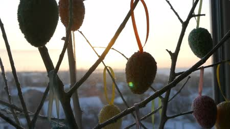 se movendo para cima : Easter multicolored eggs on white ornamental branches. A stylish bouquet of Easter eggs stands on windowsill in the rays of the dawn sun. Slow motion