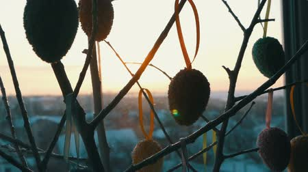 oval : Easter multicolored eggs on white ornamental branches. A stylish bouquet of Easter eggs stands on windowsill in the rays of the dawn sun. Slow motion