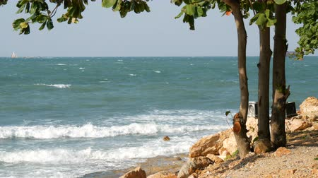 lifebelt : Nice view of the sea. The waves beat on the stony shore and there is tree. Picturesque landscape