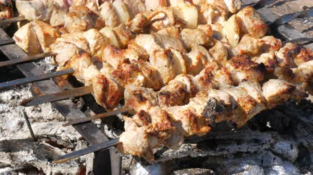 kabab : Lot of pieces of meat on skewers are roasted on a bonfire. A shish kebab or grilled meat is roasted in nature. A picnic in the countryside
