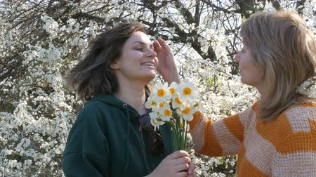żonkile : Portrait of adult middle-aged mother and her adult daughter who gives a bouquet of daffodils for Mothers Day against the background of a flowering tree