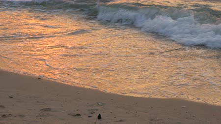 tropikal iklim : Stunning beauty of a red sunset on the beach. Waves with foam beat on sandy beach in Thailand Stok Video
