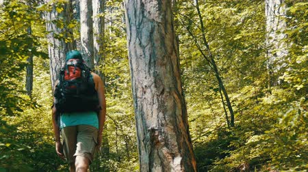 krím : Young tourist man comes with backpack on his back up a mountain path through the forest