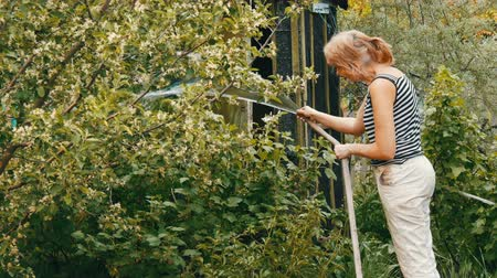 unripe : Woman is watering plants in her garden from a hose