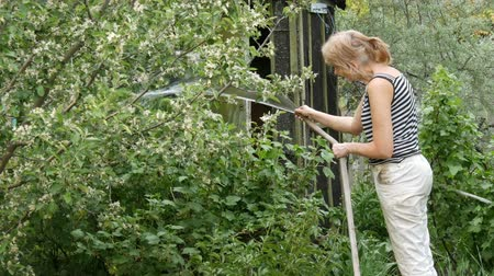 watering can : Woman is watering plants in her garden from a hose