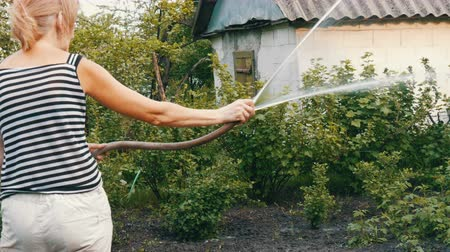 шланг : Woman is watering plants in her garden from a hose