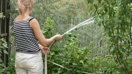 лоза : Woman is watering plants in her garden from a hose