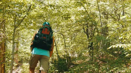 krym : Young tourist man comes with backpack on his back up a mountain path through the forest