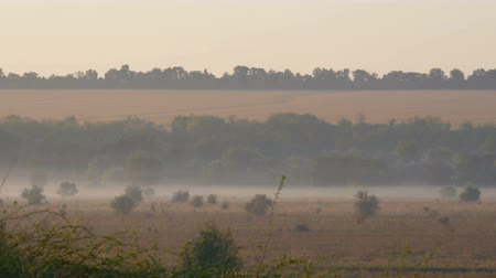 романтический : Beautiful scenic landscape of fog over the village plain