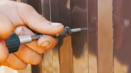 затянуть : Hand screwdriver and screws cut into the iron sheet metal close view. Mens hands repairing fence