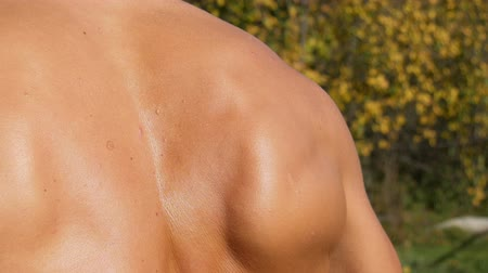 проведение : Muscles of the back of a sexy, sunburnt pumped up young worker. Sweat on back, bare torso