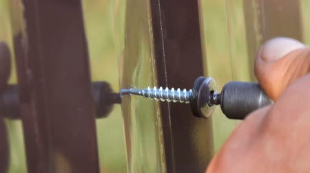 díszgomb : Hand screwdriver and screws cut into the iron sheet metal close view. Mens hands repairing fence