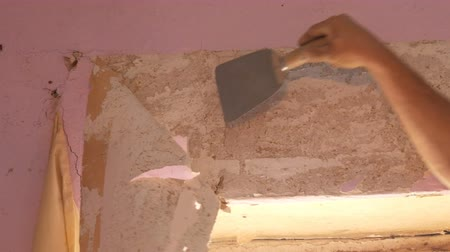 decorating : Home repairs. The male hand peels off the pink old wallpaper from the walls with special spatula