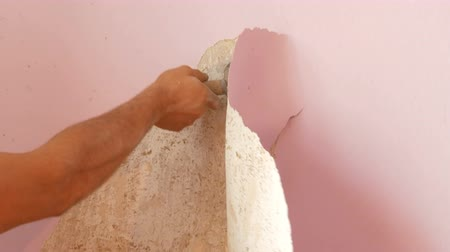 run down : Home repairs. The male hand peels off the pink old wallpaper from the walls with special spatula