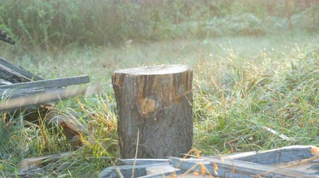 fejsze : Mens hands chop firewood with an ax on a special stump on a background of beautiful green grass in the setting sun. Man chopping wood for the grill, fireplace or stove close up view Stock mozgókép