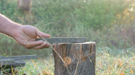 podsvícení : Mens hands chop firewood with an ax on a special stump on a background of beautiful green grass in the setting sun. Man chopping wood for the grill, fireplace or stove close up view Dostupné videozáznamy