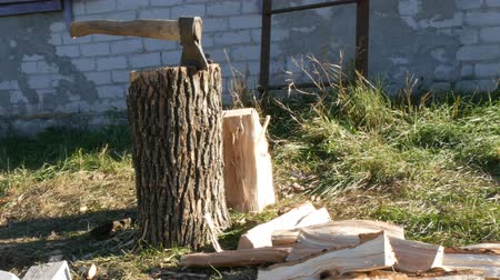 топор : Large village ax sticking in tree stump and firewood near Стоковые видеозаписи