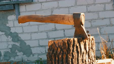fejsze : Large village ax sticking in tree stump