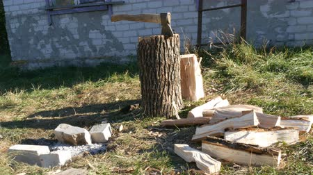 machado : Village yard, an ax in tree trunk, chopped firewood scattered Vídeos