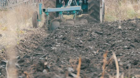 tillage : Blue Tractor with four furrow plough plowing field with black soil close up view