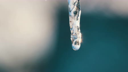 rampouch : One thin melting icicle sparkles in the sun against the blue sky. Drops of water flow in icicle