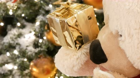 плюшевый мишка : White teddy bear, holds a box with a gift in his paws and moves on the background of the Christmas tree close up view. Christmas decor in the shopping center