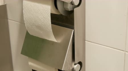 arbustos : Two rolls of white toilet paper in the cubicle of a public toilet.