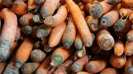 vitaminic : Beautiful ripe carrots at market stall