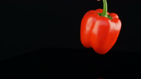Female hand holds pepper by the green tail and twirls. Beautiful big ripe red sweet pepper paprika rotating on a mirror surface and black background. Wideo