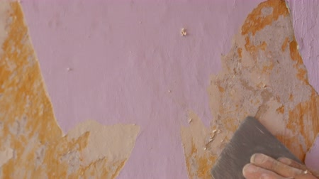 scrape : The male builders hand rips off or peel old pink wallpaper from the wall with a special spatula