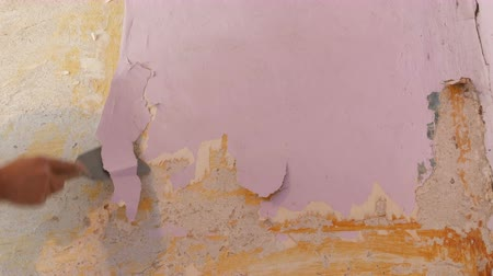 raspon : Decrepit pink wallpaper on a wall, home repair. Man peeling old wallpaper with special spatula. Archivo de Video