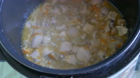 água salgada : Boiling mushrooms and carrots in a multicooker