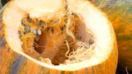 anão : Large orange sliced pumpkin with seeds inside. Harvest pumpkins for Halloween Stock Footage