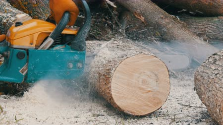 топор : A man woodcutter with a chainsaw cuts tree trunks for a fire
