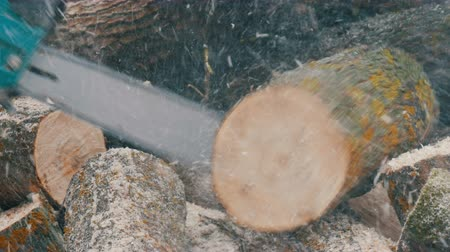 woodcut : Lumberman using the chainsaw sawing firewood in winter Stock Footage