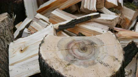 hatchet : Man woodcutter chops tree trunks with an ax for firewood close up view