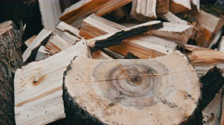 лесозаготовки : Big old wooden ax chops down tree trunks on the background of a cut log