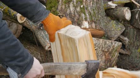 топор : Man woodcutter chops tree trunks with an ax for firewood