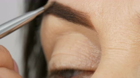 meia idade : A special brush paints eyebrows with eyebrow shadows. Close view. Professional make-up artist doing makeup to middle-aged adult woman with beautiful blue eyes. Vídeos