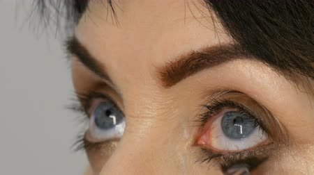 meia idade : Professional makeup artist paints mascara on adult middle-aged woman close up