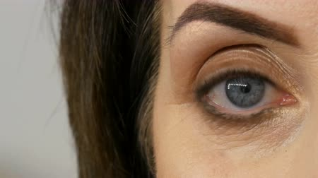 rouge : Close view of blue eye of middle-aged adult woman with beautiful make-up in a beauty salon.