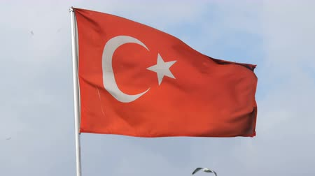 turk : Turkish National flag waves in the wind against sky Stock Footage