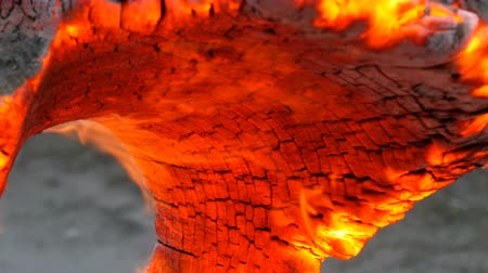 tuskó : Interesting unusual smoldering and burning old tree stump, glowing from wind