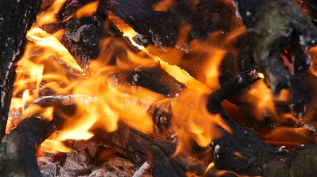 compleição : Nice and stylish wood burning fire and close up