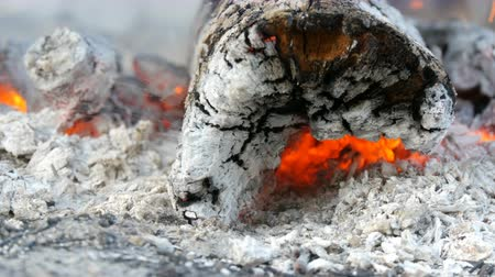 roto : Nice and stylish smoldering and burning wood fire close up