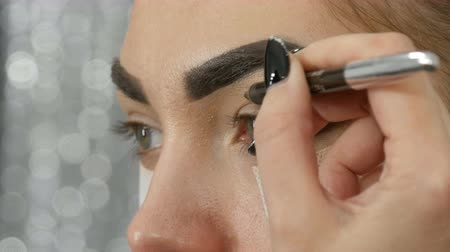 füstös : Professional make-up artist makes the makeup smoky eyes of brown shade of a beautiful model with green eyes close up