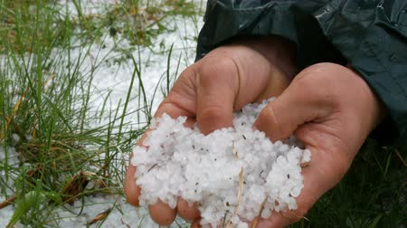 явление : Natural disasters. Early spring snowy ice hail on green grass. A man holds a cold hail in hands Стоковые видеозаписи