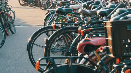 bisikletçi : Amsterdam, Netherlands - April 21, 2019: Parking for bicycles. Many different bicycles parked on a street in special parking lots. The problem of bicycle overload in the country Stok Video