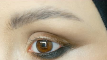 clareza : Professional stylist make-up artist makes eye makeup model. Face model with evening makeup close up view
